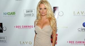 Pamela Anderson Names the Safest Country For Julian Assange