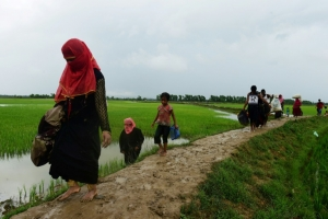 Rohingya rebels call one-month Myanmar ceasefire as exodus grows