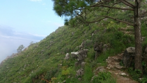 'Sarangkot-Naudanda' trekking route to come back to operation