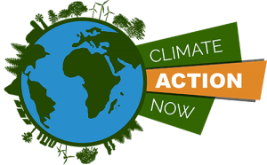 Local government in climate action
